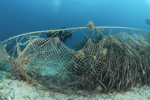 Des filets de plusieurs centaines de mètres sont abandonnés en Méditerranée.