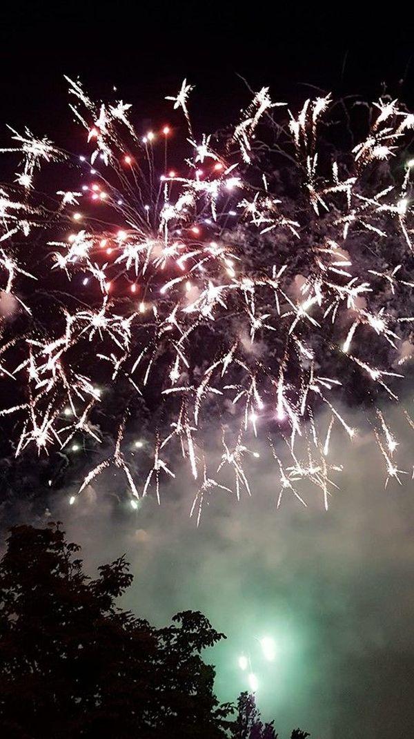Le feu d'artifice strasbourgeois vu depuis un autre espace vert.