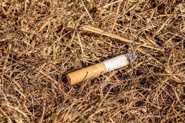 Selon une récente étude, plus d'un Français sur trois jette ses ordures par la fenêtre de sa voiture... dont les mégots.