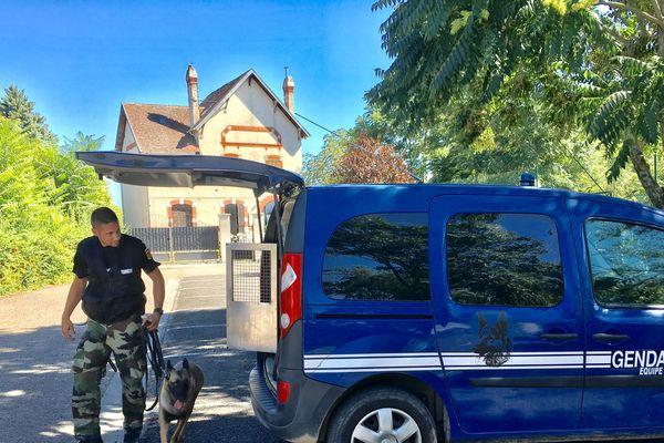Mercredi 4 septembre un important dispositif a été mis en place pour retrouver le septuagénaire. Un appel à témoins a également été lancé. L'homme a finalement été retrouvé le 5 septembre dans la forêt de Randan ( Puy-de-Dôme).