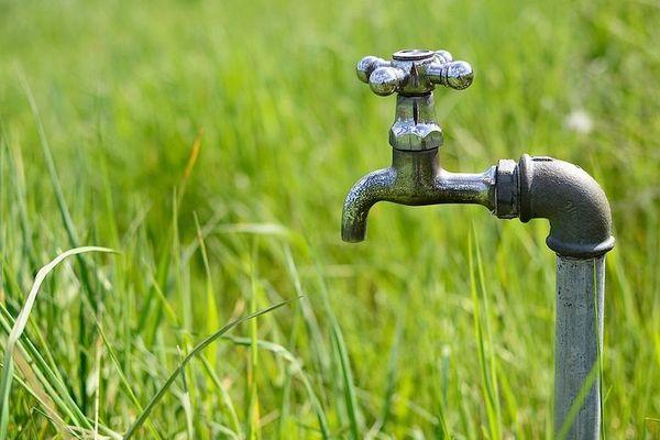 Des mesures de restriction d'eau sont nécessaires pour lutter contre la sécheresse