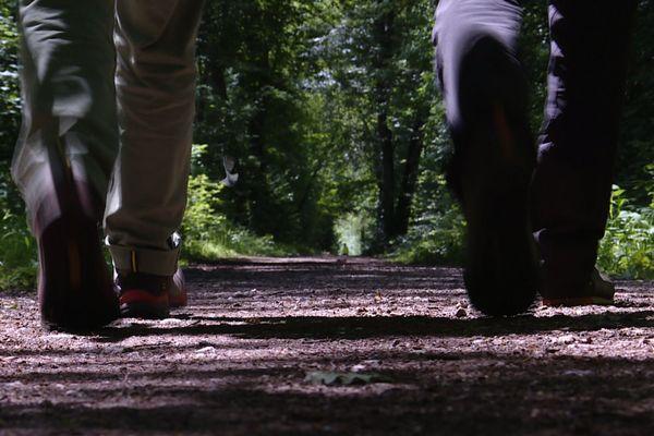 Chaque année, 16 millions de Français pratiquent la randonnée.