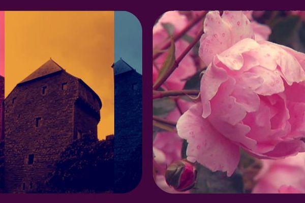 Lassay des fleurs et un château.