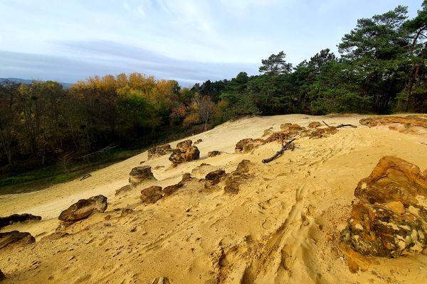 La grande sablière de Châlons-sur-Vesle forment une dune de plusieurs mètres de haut.