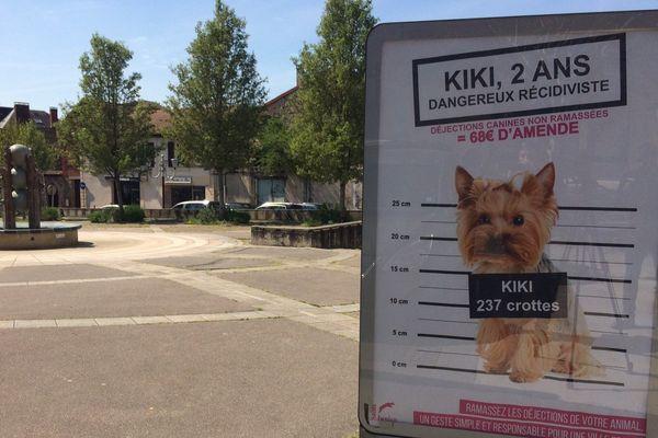 Kiki pourrait coûter cher à son propriétaire.
