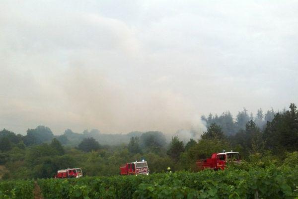 Important incendie de forêt ce mercredi 22 juillet vers Mercurey en Saône-et-Loire