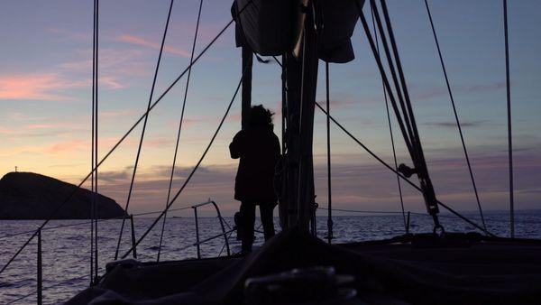 Le Chant des Cachalots, un film documentaire de Romane Charraud fera l'objet d'un ciné-rencontre le 18 novembre à 19H30.