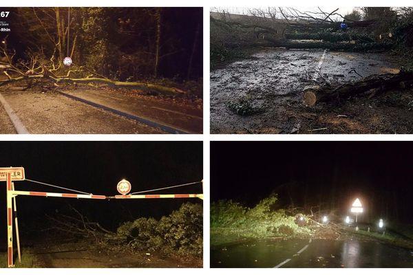 Beaucoup d'arbres sont tombés dans la nuit de mercredi à jeudi sur les routes d'Alsace