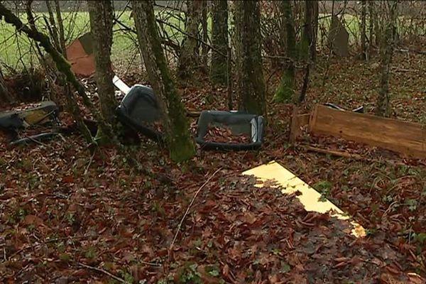Les décharges sauvages sont nombreuses dans les forêts