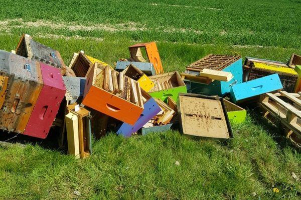 Les ruches de Mathieu Noirot à Courtenay ce samedi 24 avril.