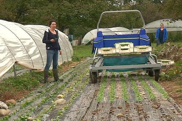 Toutilo, un engin pour faciliter la vie des agriculteurs.