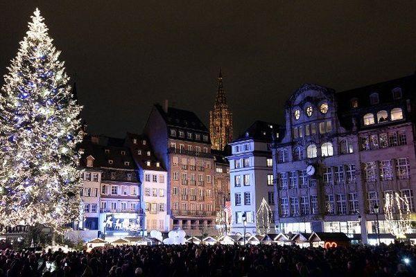 Le sapin de Noël de Strasbourg, installé Place Kléber