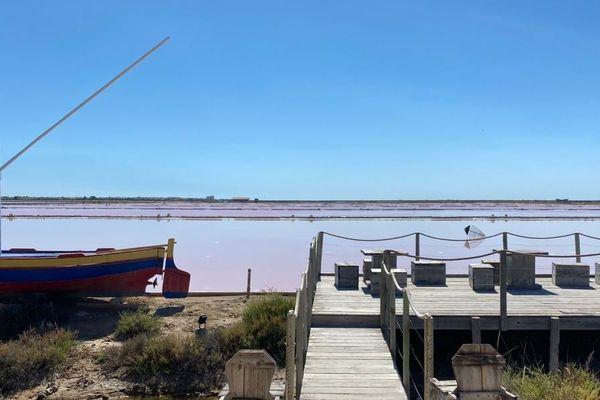 Gruissan (Aude) - Les salins s'étendent sur 400 hectares de nature - 30.06.2020