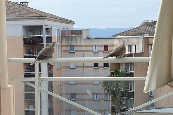 Roméo et Juliette dans la scène du balcon.