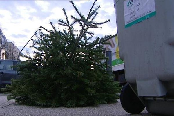La collecte des sapins de Noël en porte à porte est un service rendu par le Grand Dijon aux habitants de la Communauté urbaine et une initiative écologique. En 2014, 28 tonnes de sapins de Noël avaient été collectées.