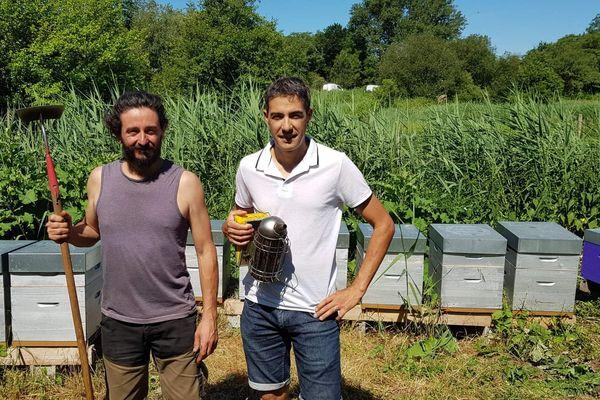 Le maraîcher Pierre Gratadour accueille les ruches de Juan Gonzalez, dont les abeilles participeront à polliniser ses légumes.
