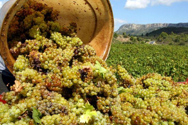 Languedoc-Roussillon - les aides étaient notamment destinées à promouvoir le vin à l'étranger - octobre 2019