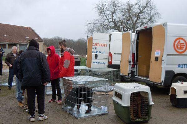 Une soixantaine de chiens a été sauvée à Couleuvre, dans l'Allier, après le décès de leur éleveuse jeudi 7 mars. En moins de 24 heures, quatre refuges ont répondu à l'appel de la Confédération nationale défense de l'animal.