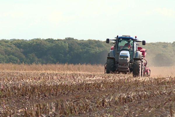 La hausse du prix des engrais azoté inquiètent les agriculteurs notamment sur cette exploitation où l'on cultive le blé à Pendé dans la Somme