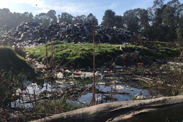 Certaines solutions trouvées peuvent représenter des risques pour l'environnement et les populations. C'est le cas du quai de transfert de Capo di Padule à Porto-Vecchio saturé.