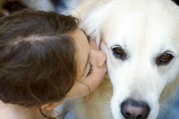 La petite fille d'un an et demi a été retrouvée avec son chien dans un champ à Laon dans l'Aisne. (Photo d'illustration)