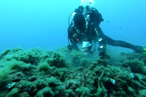 Les plongeurs de l'association Depth's Guards découpent et remontent les filets de pêche fantômes à la surface.