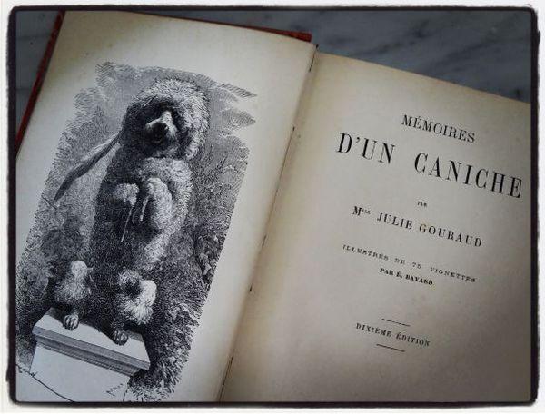 Le titre de ce livre m'a régalée.
