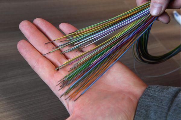 Actuellement, en Corse, 30.000 logements sur 170.000 sont reliés à la fibre optique.