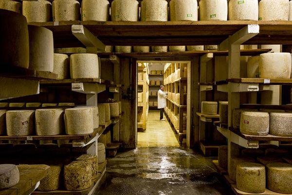 Le Cantal désigne à la fois le fromage, le département et le massif volcanique.