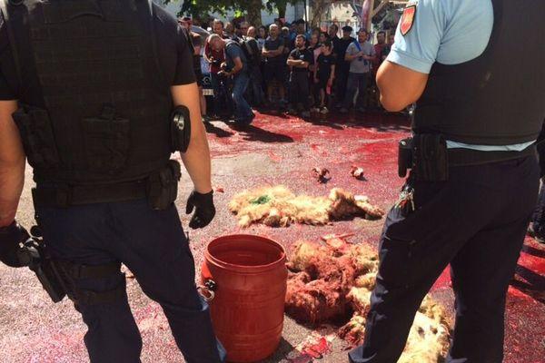 Manifestation des anti ours le 29 août dernier. Les éleveurs béarnais ont jeté du sang devant la mairie d'Etsaut.