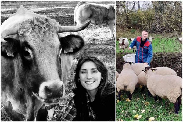 Constance Pasquier, première dauphine, s'intéresse aux vaches. Julien Japiot, deuxième dauphin, travaille dans un élevage de moutons.