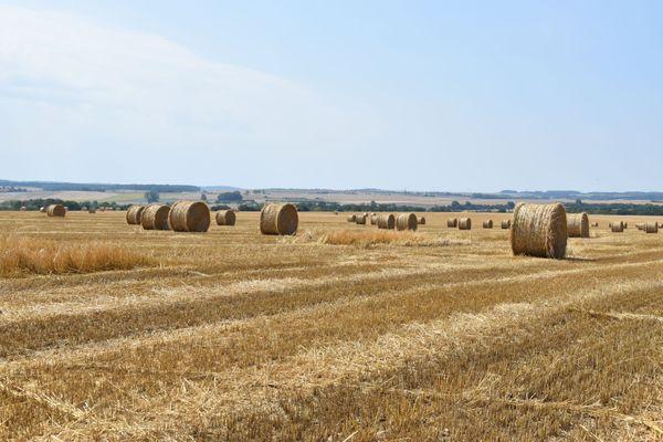 """""""Réguler l'accaparement des terres est urgent pour éviter l'agrandissement excessif des exploitations agricoles"""" selon le député Dominique Potier"""