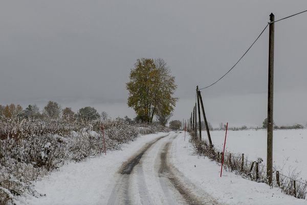 Près de 300 000 foyers sont privés d'électricité ce vendredi matin en Auvergne-Rhône-Alpes.
