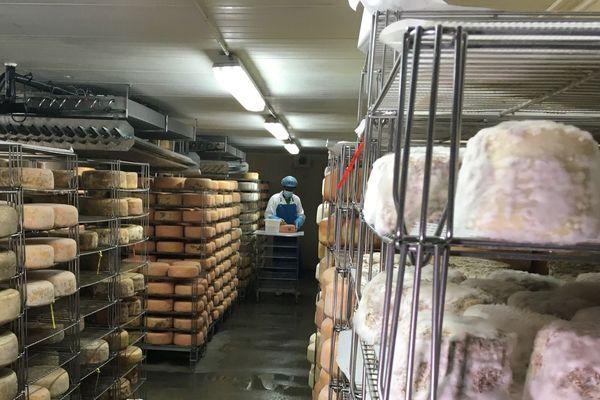 Il faut trouver des débouchés pour tous ces fromages de qualité