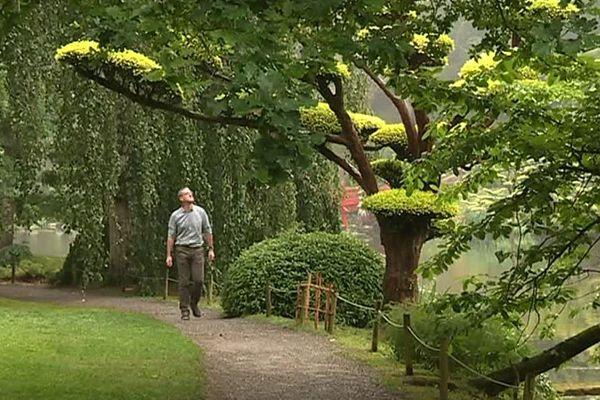 Au coeur du jardin de Maulévrier (Maine-et-Loire)