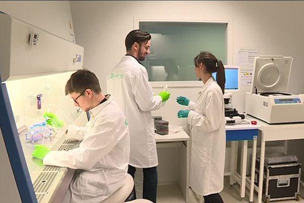 Actuellement, TreeFrog Therapeutics emploie dix salariés à Bordeaux. Les effectifs devraient doubler l'an prochain.