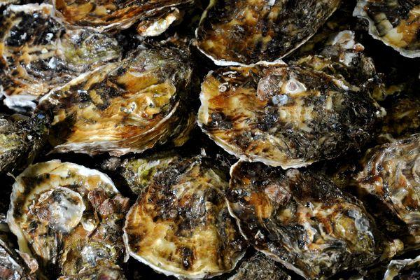 Des huîtres en provenance de l'étang de Thau