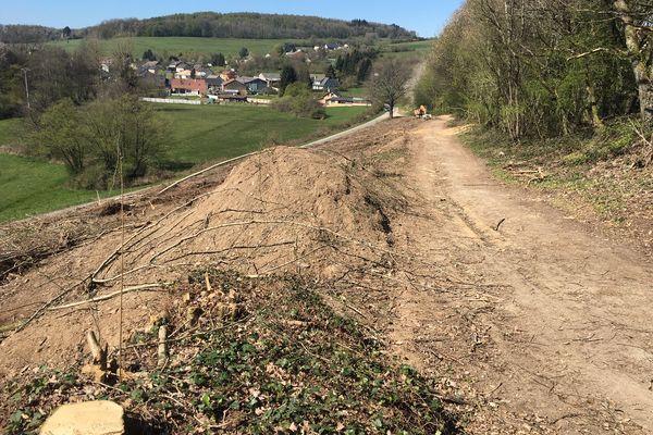 Entre mars et avril 2021, une partie de la zone proche d'Issancourt-et-Rumel avait été déboisée.