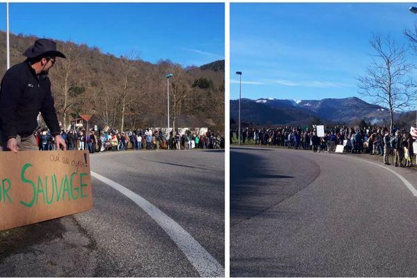 Une marche blanche à Saint-Amarin le samedi 15 février pour protester contre le braconnage du lynx, une espèce protégée