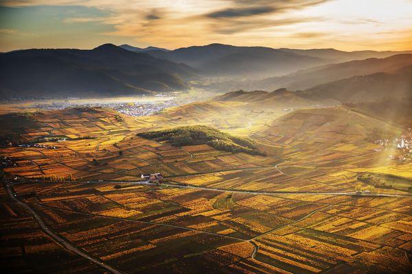 Le vignoble dans ses couleurs d'automne, ici dans le secteur de Katzenthal, donnera-t-il envie aux touristes de passer leurs vacances de la Toussaint en Alsace?