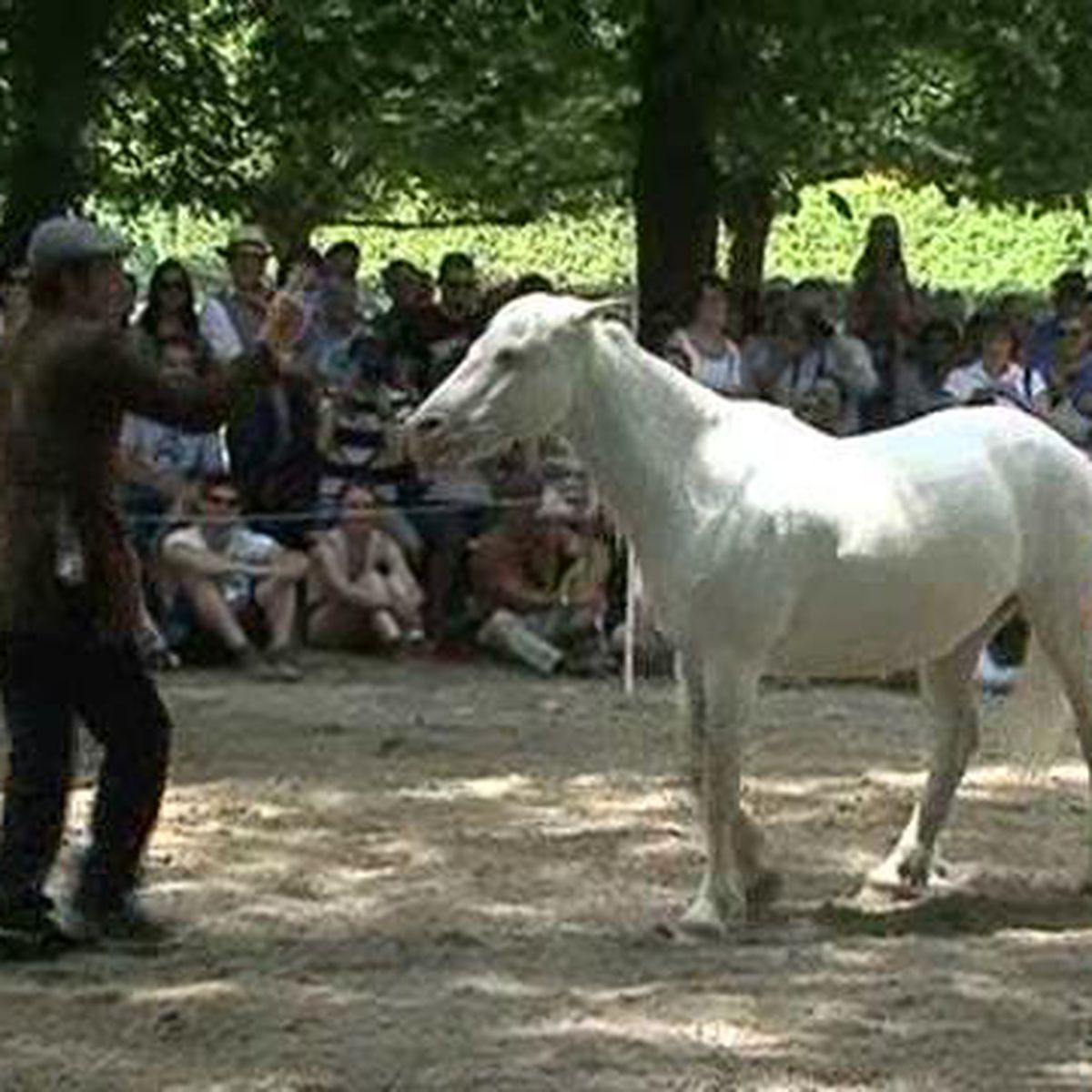 Rencontres Equestres Méditerranéennes De Beaucaire