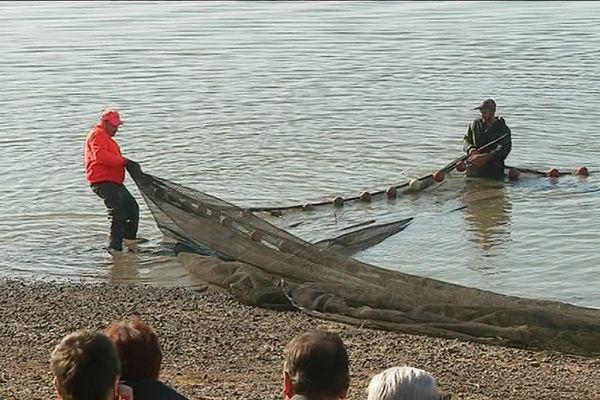 """Jusqu'au 18 novembre, pêche au """"tiré de filet"""" aux étangs de Lachaussée en Meuse."""