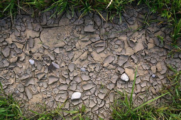La sécheresse n'en finit plus