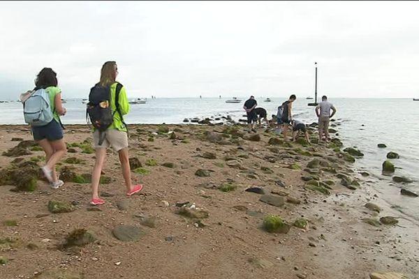 Ces ambassadrices du littoral indiquent aux pêcheurs de coquillages les gestes à adopter pour préserver la faune