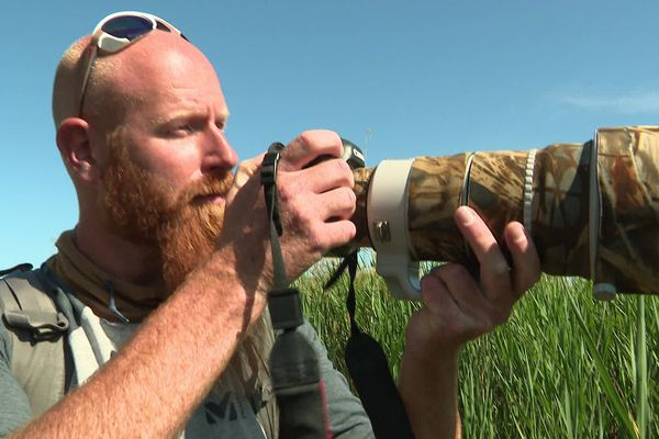Jonathan Lhoir, à l'affût photographique dans la réserve du Bagnas.