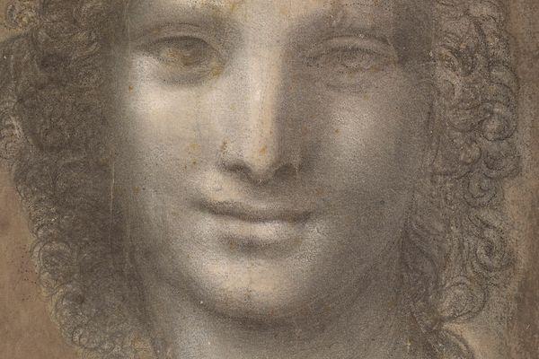 L'oeuvre est attribuée à Léonard de Vinci.