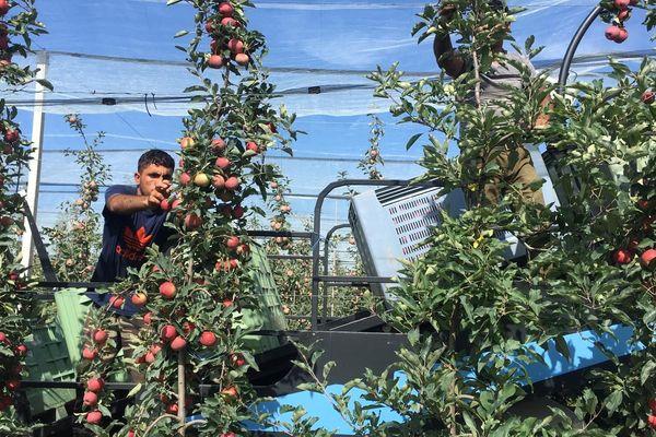 Les travailleurs saisonniers devront faire face à une précarité encore plus importante.