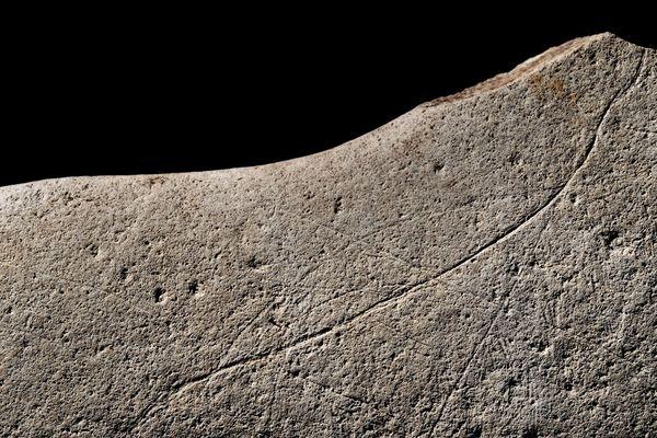 Détail de la plaquette de grès découverte à Angoulême (ligne dorsale)