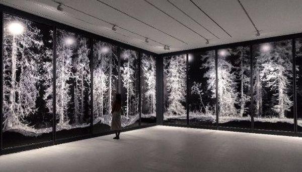 L'artiste italien Quayola est lauréat du prix international de la biennale des imaginaires numériques pour la proximité de sa démarche artistique avec l'héritage de Victor Vasarely. Ici son œuvre Remains.