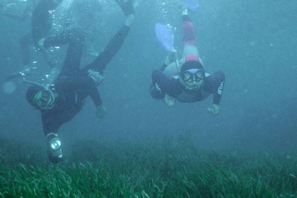 Certaines règles simples permettent d'éviter les accidents lors de plongées en apnée.